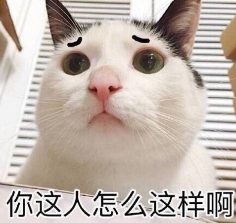 小猫一分钱歌曲简谱歌谱