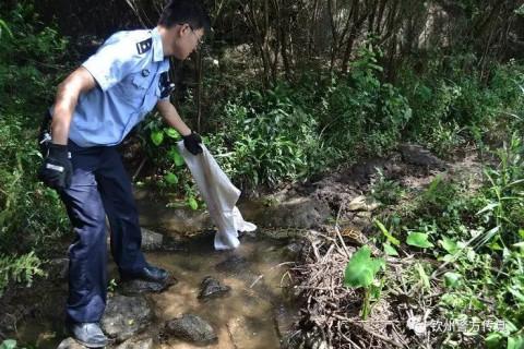 [一线报道]巨蟒误闯民舍, 森林公安解救.