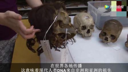 中国新出土26万年前头骨, 将彻底改变人类对于祖先以及进化的认知