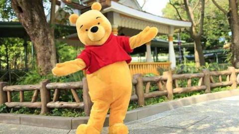 winnie the pooh(小熊维尼),它的好朋友们piglet(小猪),tigger(跳跳虎