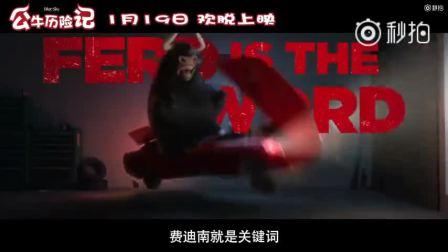 【《公牛历险记》曝光开年狂欢预告】影片由卡洛斯·沙尔丹哈执导,约翰·塞纳、吉娜·罗德里格兹、鲍比·坎纳瓦尔等配音的。费迪南骑着颇具反差萌的小红摩托拉开了新年序幕,搞笑和冒险齐飞。电影将于1月19日在全国上映。