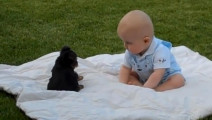 小狗第一次与人类婴儿接触会怎样?下一幕让人哭笑不得