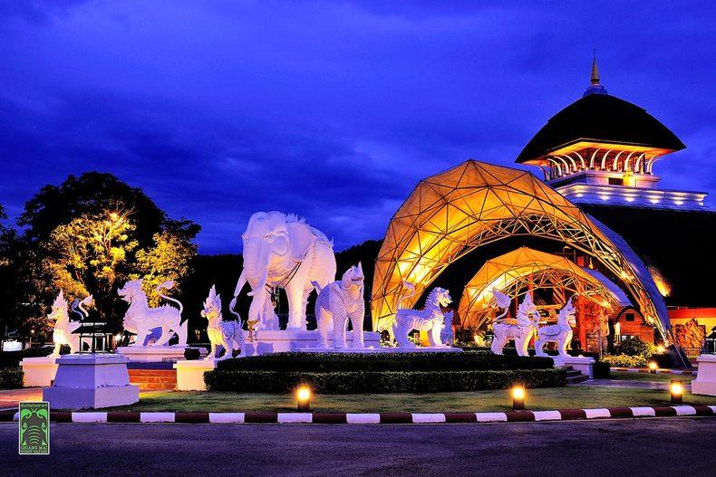 越晚越来劲? 来泰国最大的夜间动物园彻夜玩到high