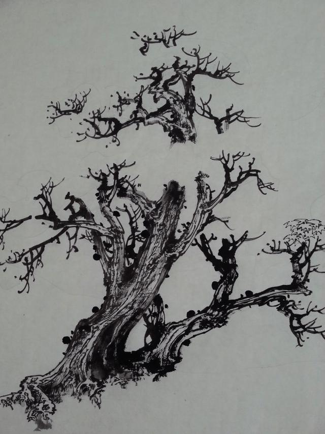 国画树木画法-山水画树的画法步骤图,国画树的画法步骤图,素描树木的