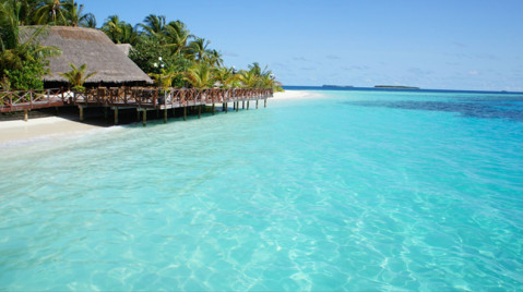 基础型岛屿:蓝色美人蕉,库达班度士,幸福岛 豪华型岛屿:萨芙莉岛