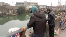 爽!春节长假最后一天,兄弟俩一起钓鱼,白条一条接一条!