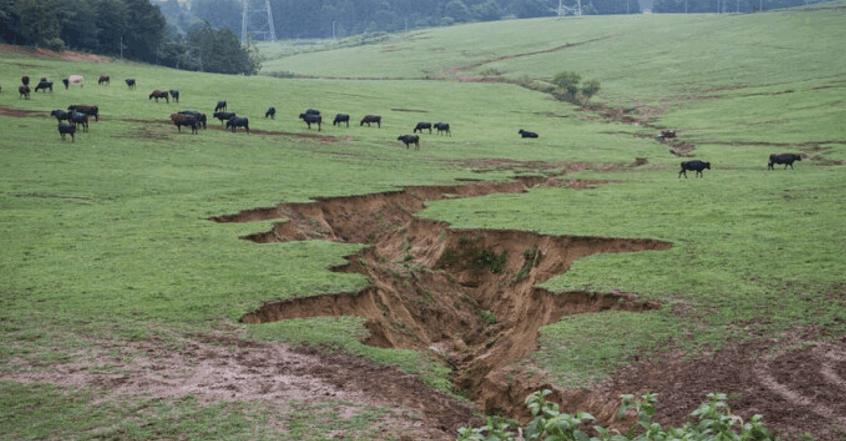 日本福岛核泄漏后的真实场景: 大量大米被污染, 无数汽车被遗弃