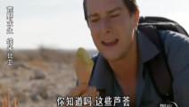 贝爷在沙漠,找到沙漠里的万金油!用处多多啊