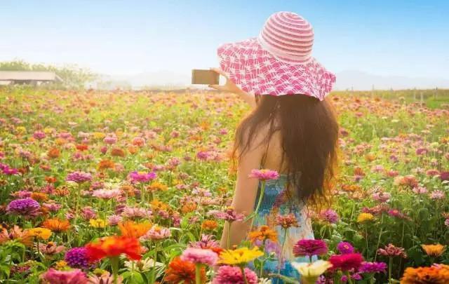 唯美微信头像风景花卉