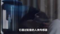 日本造出老婆机器人,功能齐全,2万块带回家