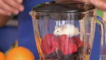 恶心的恶作剧: 熊孩子把小白鼠放进榨汁机里,路人喝得津津有味