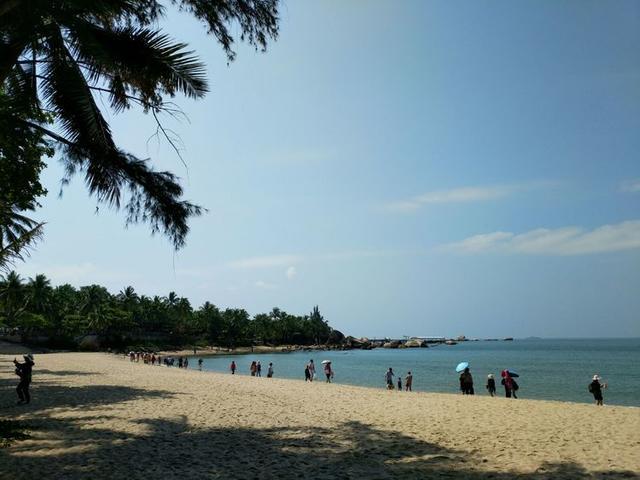 椰子树,沙滩,大海这不就是我梦里的地方吗