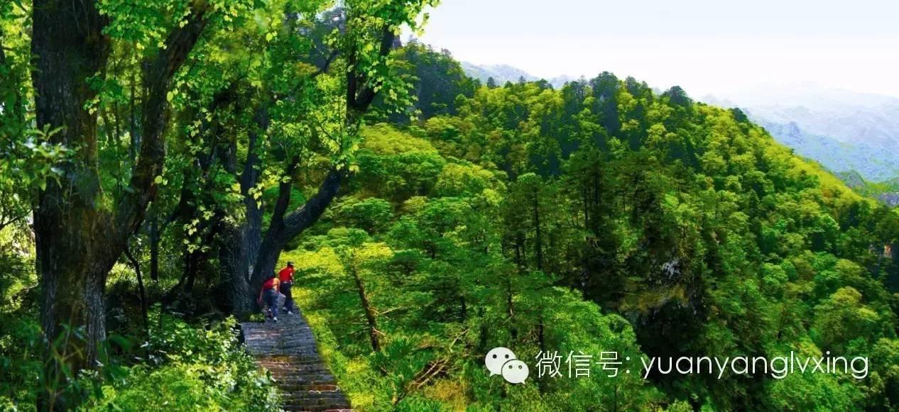 一,木扎岭风景名胜区位于河南省洛阳市嵩县车村镇,是国家aaaa级景区