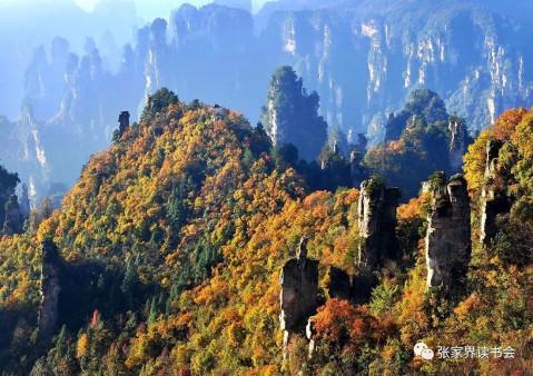 刘晓平: 张家界的秋天 - 微信奴图片
