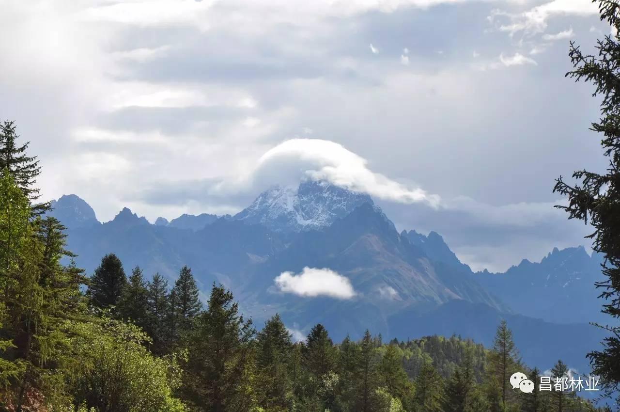 贡觉拉妥,边坝炯拉措),国家级森林公园1个(八宿然乌湖国家级森林公园)
