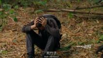 贝爷遇到的挫折,勇敢前进永不言败,吃条蛇调整下心态!