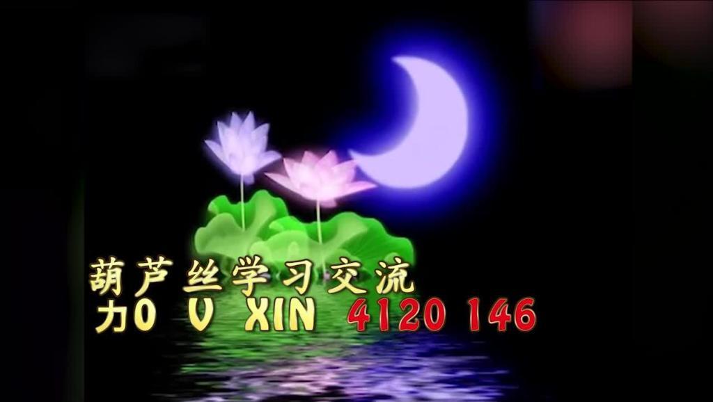 映山红葫芦丝简谱竹林深处演奏超清