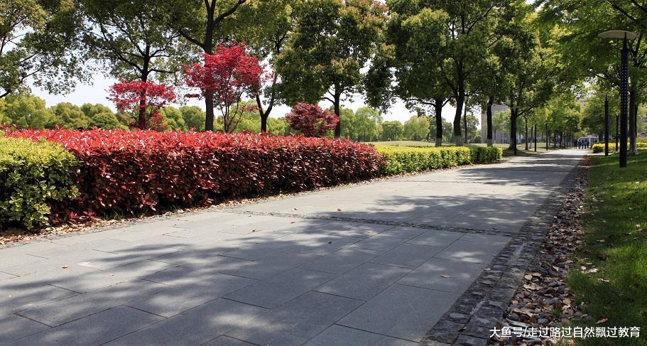 上海工程技术大学和上海理工大学 上海市两所代表性工科院校,