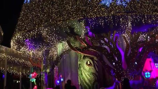 新加坡圣诞树
