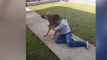 失踪八个月的狗狗突然回家 小主人当场就泪崩了