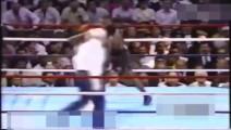 拳王泰森生涯最强重拳 对手直接被打飞两米远!