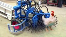 头一次见!养鸡场捉鸡机器,启动后5000多只鸡一个不留,厉害了