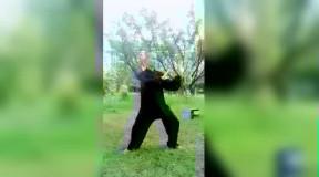 杨氏太极拳老拳架单边与白鹤亮翅的练法