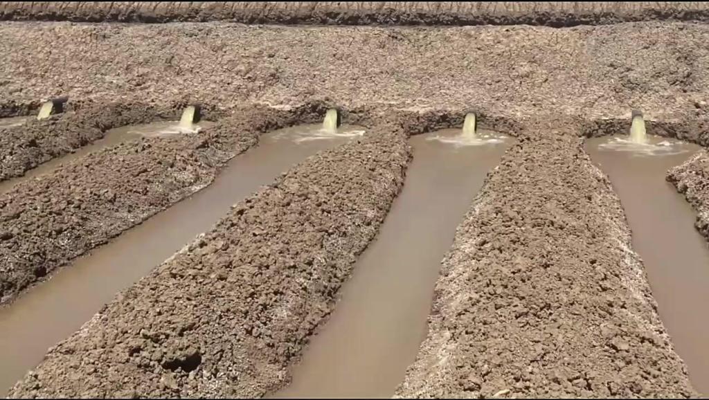 澳大利亚利用虹吸原理自动化智能引洪水灌溉的农场