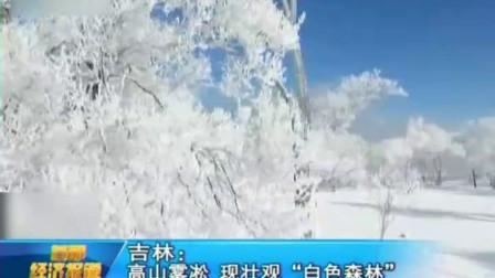 """首都经济报道吉林: 高山雾凇 现壮观""""白色森林"""" 高清"""