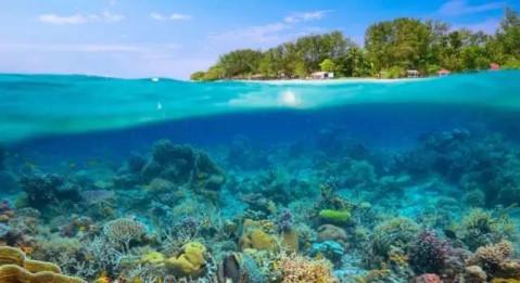 惠州有个能浮潜的超美海岛在双月湾, 消暑的好地方!