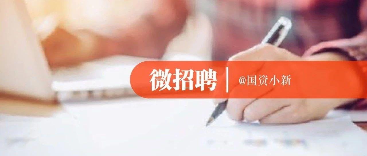 社招 国家电投所属公司事业部公开招聘