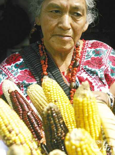 转基因种子, 以全球多国农业捕捞业为主