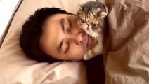 谁说猫咪高冷,这只猫根本就是粘人精