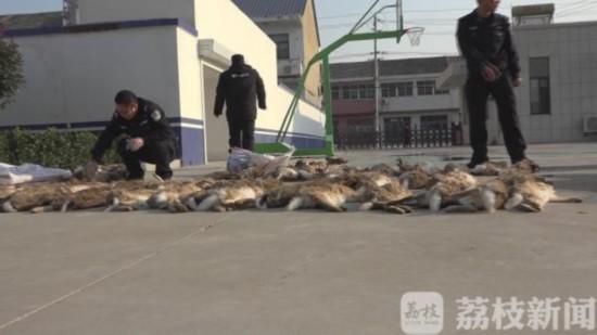 用狗捕杀野兔子 盐城响水六名涉案村民被抓