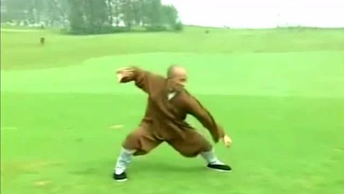 少林武术炮拳,此拳是由福居禅师根据十八家短打逐步演变而成