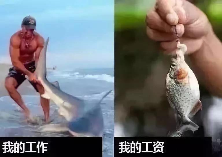 2018广东21市真实薪资报告出炉! 这次终于达标了! 但扎心的是……(图8)