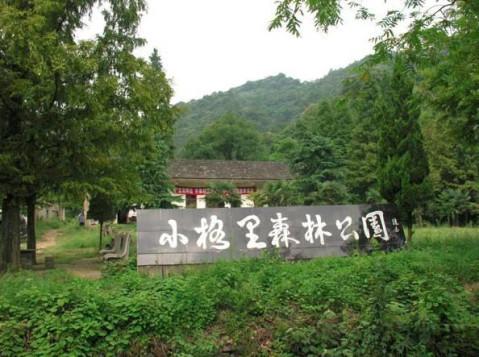芜湖大浦乡村好玩么? 丫山风景区怎么样? 南陵小格里怎么样?