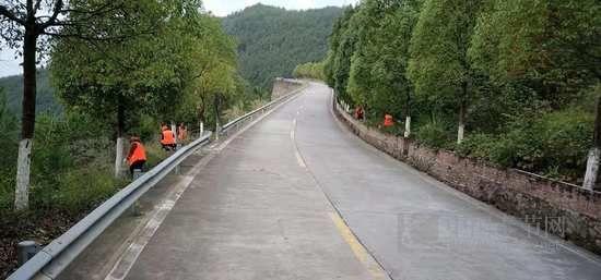 """奉节刷白五万余棵""""公路行道树""""安全警示驾驶人"""