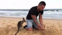 这个肌肉男养了一只宠物袋鼠,竟然可以跟他一起玩,一起逛超市,一起玩