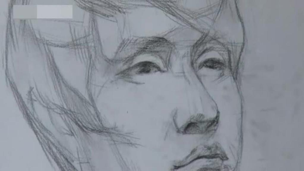 学习铅笔画 打开 素描图片大全简单漂亮素描基础入门教程素描cut教您