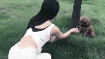 公园看到一个美女在逗泰迪狗狗真是可爱