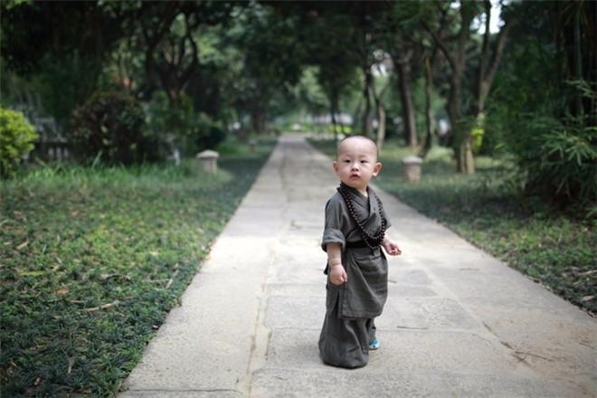 萌死人的小和尚, 中国 韩国 泰国 日本, 感觉还是中国