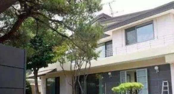 院子里种满名贵松柏, 就像住在森林里一样 宋慧乔在韩国的豪宅: