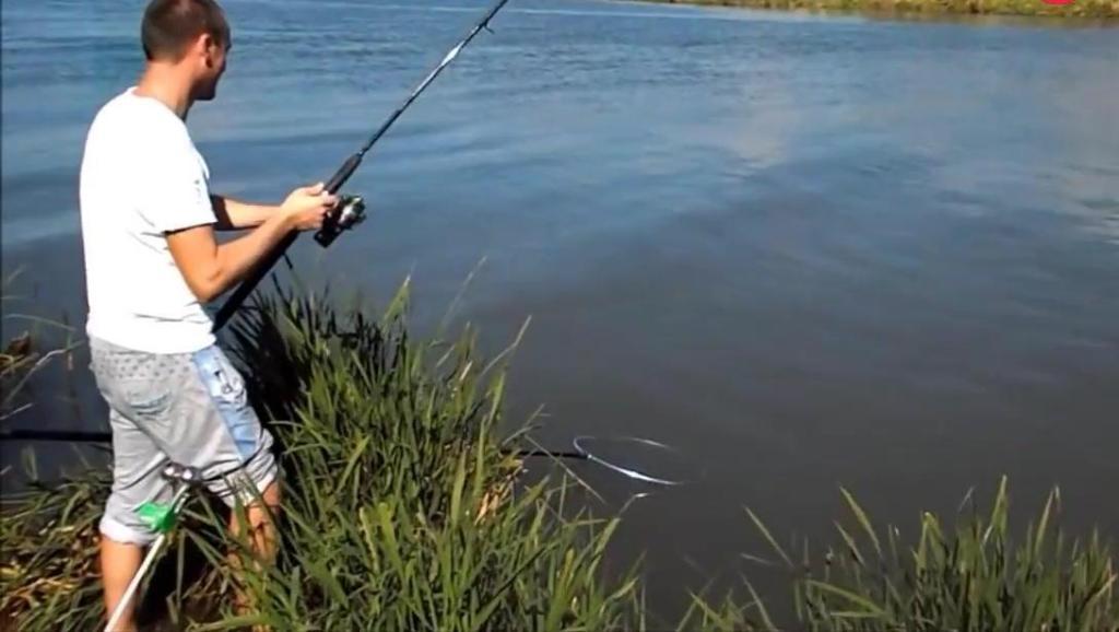 钓鱼: 半天没上小鱼,是有大鱼出现了!