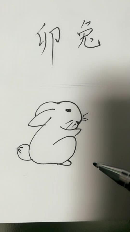 猫虎鱼鼠手绘