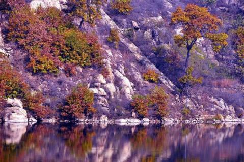 山东香山国际旅游度假区内的香山是莱芜市第一高山,和东岳泰山一脉相