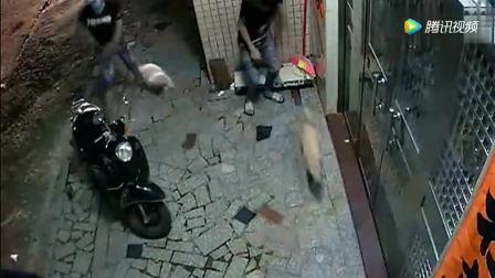 三小伙正在门前逗狗玩, 监控拍下让他们恐惧的一幕!
