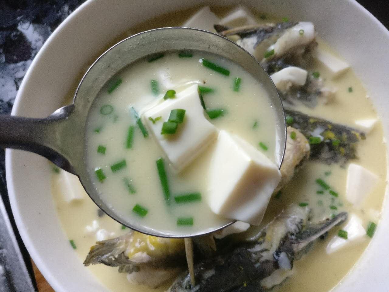 豆腐鱼汤怎样制作【家庭版】