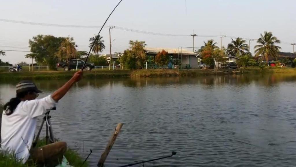 钓鱼: 1斤多的鱼连口,那是很过瘾的!