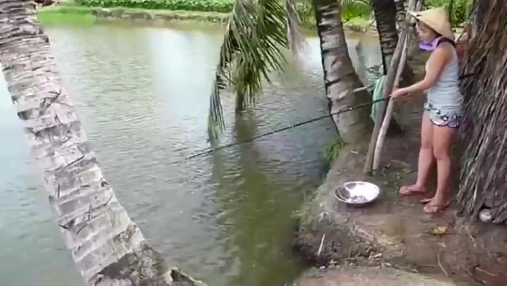 柬埔寨媳妇很持家,在屋后钓鱼